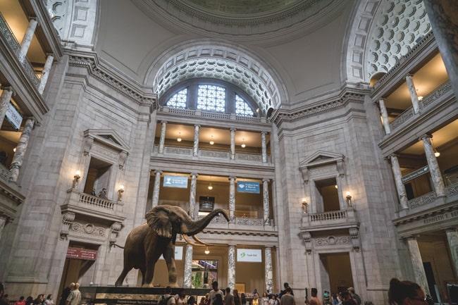 Музеи и искусство